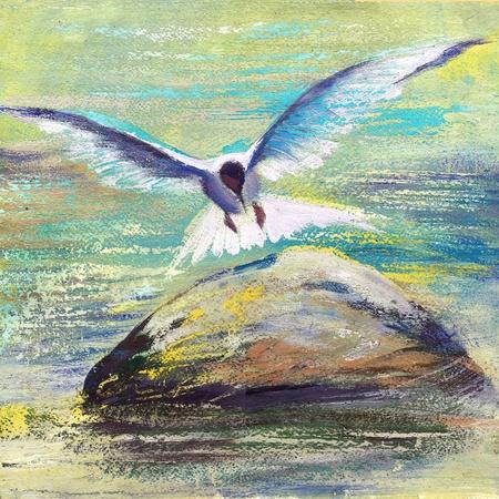 dieren: De zeemeeuw, vliegen over water Stockfoto