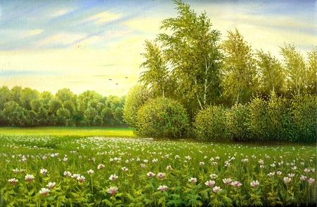 buisson: Champ de fleurs avec des arbres et buissons Banque d'images