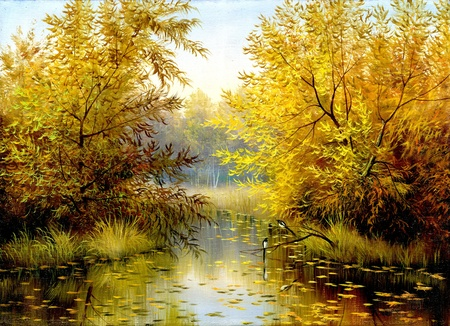 autumn wood lake with trees and bushes photo