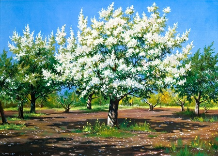 oil on canvas: Blossoming, spring garden Stock Photo