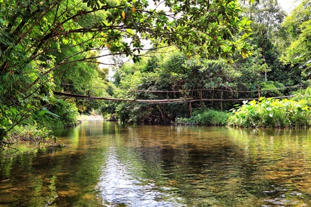 The bridge on the river in jungle, Thailand
