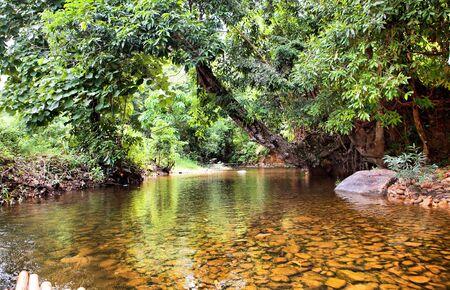 River in jungle, Thailand photo