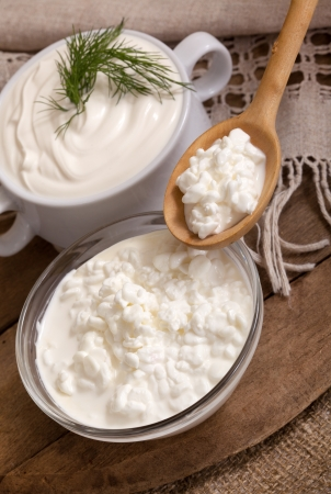 Sour cream: cottage cheese in a plate and a spoon with cottage cheese