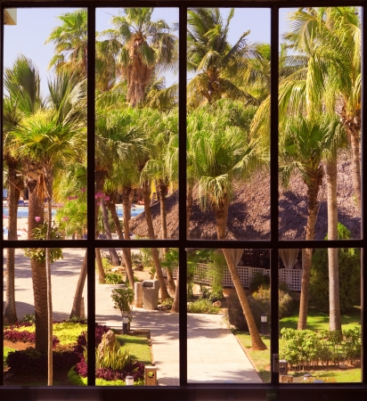 view of a tropical garden through a panoramic window photo