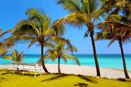 beach in Varadero, bench in the sand  photo