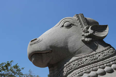 The sacred bull of Shiva is Nandi. A stone head of a bull against the sky. Worship of a bull in Hinduism.
