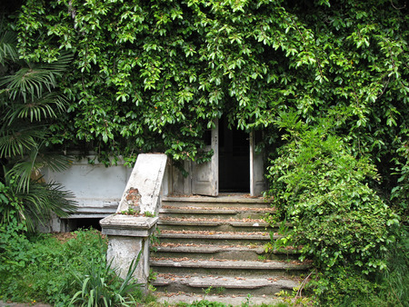 rickety: The entrance to an abandoned house overgrown with plants. Abkhazia.