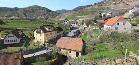 wine road: Village of Weissenkirchen-in-der-Wachau, surrounded with flowering gardens and terraced vineyards. Wachau-valley, district of Krems-Land, Lower Austria.