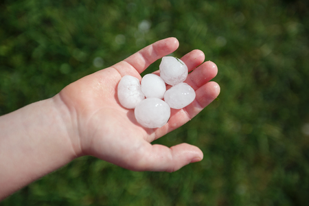 Large hail on the childs palm after the summer hailstorm in Vienna, Austria.