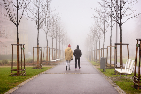 Two men walking along a foggy alley in the city park of Znojmo on a winter day. Znojmo, Czech Republic, Europe Stok Fotoğraf