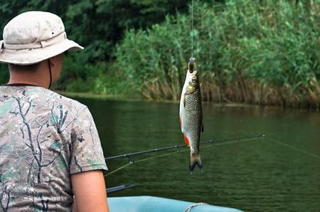 chub: chub caught on the background Fisherman
