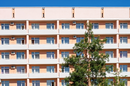residence: high pine on the background of the hotel building