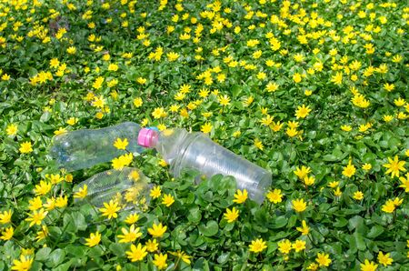 discarded plastic bottles and packaging in the grass with yellow flowers