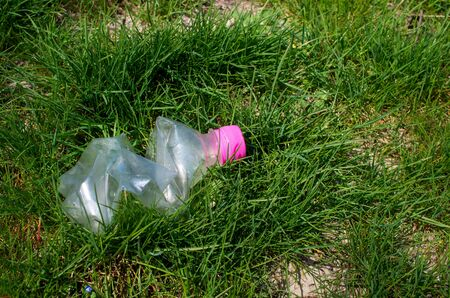discarded plastic bottle in green grass