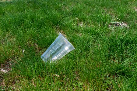discarded plastic cup in green grass