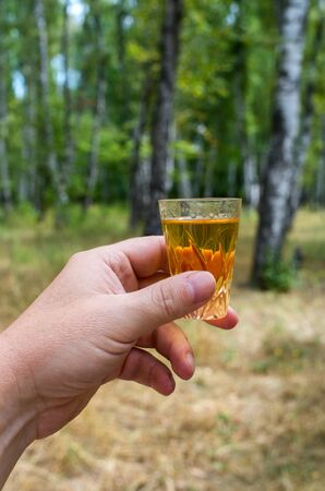 glass of whiskey in hand in nature 免版税图像