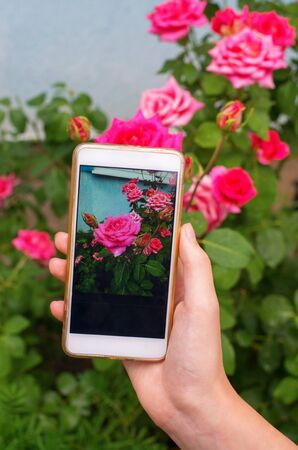 girl using smart phone for a rose photo
