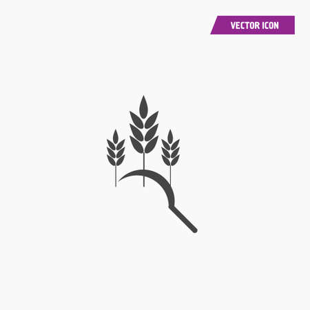 Scythe and wheat. Wheat spikelets. Vector illustration isolated on white background.