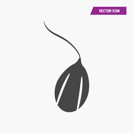 Germinated seed icon vector. Agriculture concept. vector.
