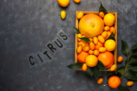 Citrus background with assorted fresh citrus fruits in food storage basket,lemons,oranges,tangerines,kumquats,grapefruit,top view 免版税图像