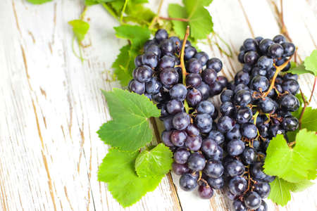 Blue grapes dry bunch on white rustic background