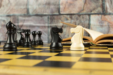 Knights against each other on the chessboard