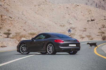 Parking a grey color sport car in the mountain road 스톡 콘텐츠