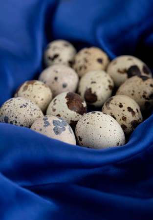 Fresh farm quail eggs on blue sateen cloth
