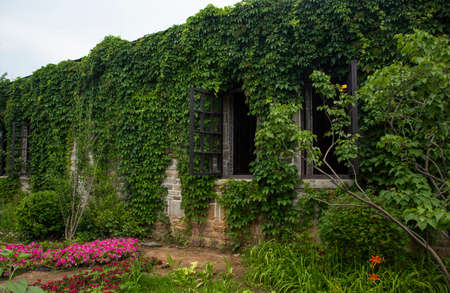 Historical building abandoned and occupied by plants