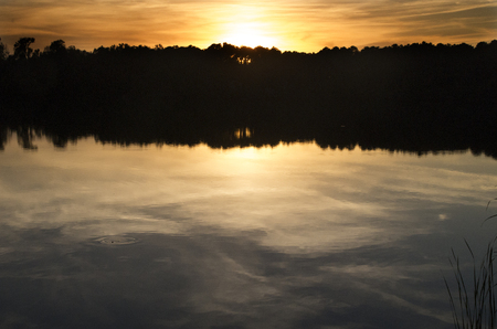 The sun sets behind the treeline at a campground in Charleston, South Carolina Stockfoto