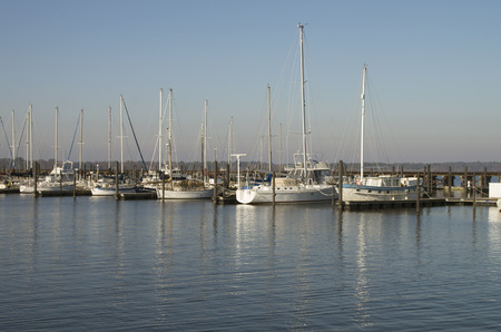Boats are moored at the Bridgeton Marina on a sunny Sat. morning in November in Bridgeton ,North carolina