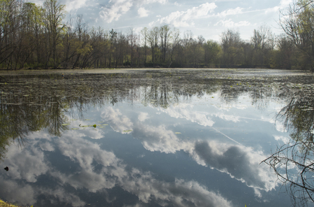The clouds are being reflected on a fishing pond at the Ashevile East KOA in Swannowa,North Carolina