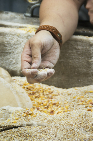 Corn is ground into the second stage for producing legal Moonshine in Pigeon Forge ,Tn. Stockfoto