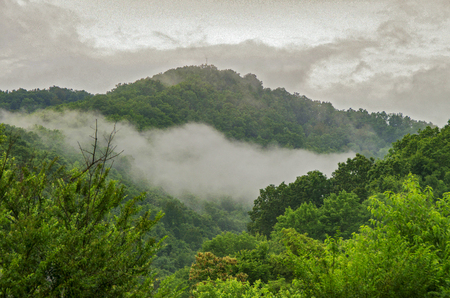 Fog rises off a mountain in Southwestern Virginia after an early morning rain shower.