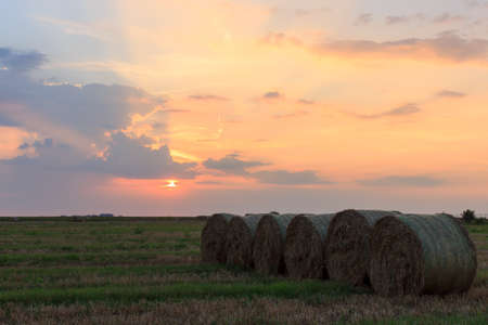 agricultural area: Agricultural area at sunset