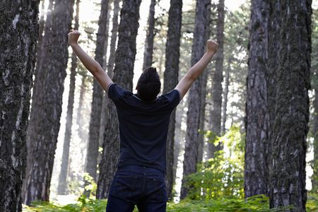 Man celebrating with arms lifted in the forest  Stock Photo