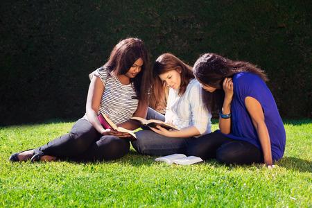 persona leyendo: Tres amigos que estudian juntos para sus ex�menes en la Naturaleza