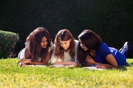 Three Friends Studying at the Park photo