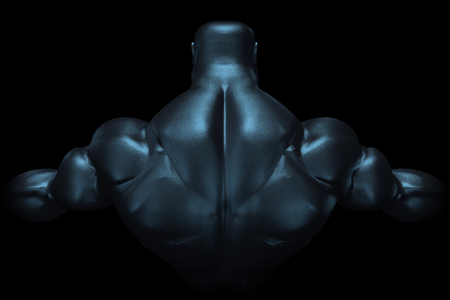 dorsi: 3D Rendering of Muscle Mans Back