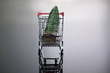 Front Top View of Mini Christmas Tree Inside Tiny Shopping Trolley on Silver Background
