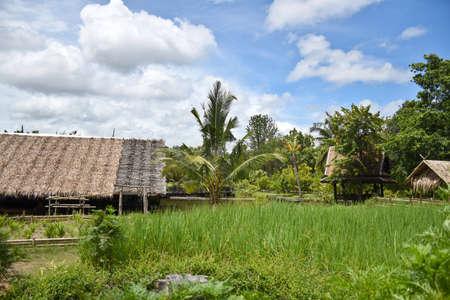 Kanchanaburi, Thailand, 09.09.2019: Beautiful garden with lake. 에디토리얼