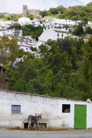 exists: Pueblos Blanco are small Andalusian villages where rural life still exists.