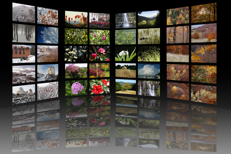 media room: A media room, containing a gallery of 10 images for each season of the year, with black