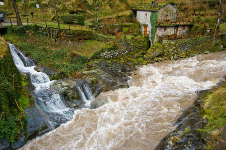 tributary: A small stream of clear water flows into a river of muddy water
