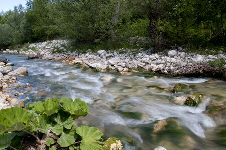 torrent: Flow of water of a torrent with cobblestone inside a wood Stock Photo