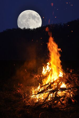 burns night: A fires burns inside the forest in a full moon  night