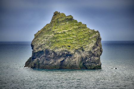 High rocky countertops in Iceland are the main places for the nesting of Puffin, species of alcids (auks). Stock Photo