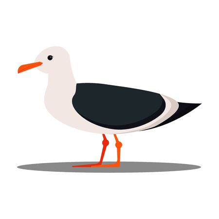 Isolated on white background seagull flat design icon. Cartoon style vector illustration. 向量圖像