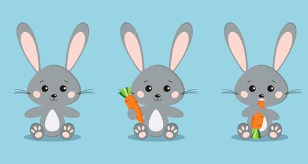 Set of isolated cute grey rabbits in sitting pose with carrot in paw, eating carrot on blue background in cartoon flat style. Vector characteres illustration. 矢量图像