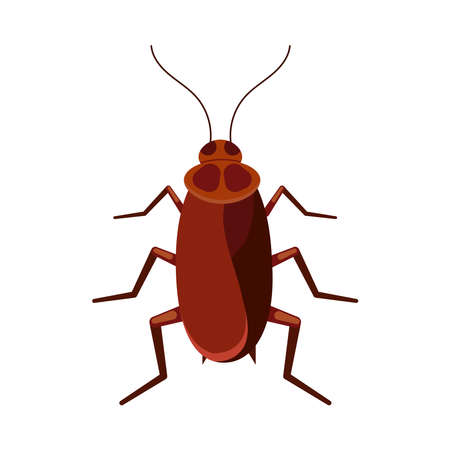 Cockroach vector icon isolated on white background. Brown roach bug logo symbol. Flat design cartoon style beetle illustration.
